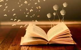 livres.jpg